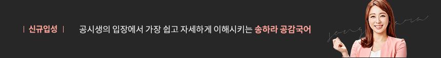 공감국어 송하라 교수님